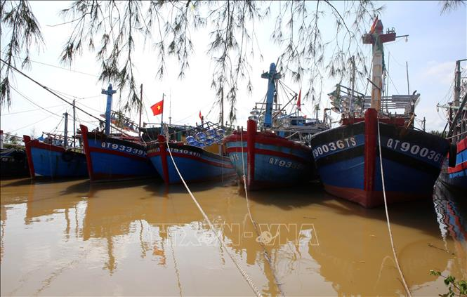 Tàu thuyền ngư dân xã Gio Việt đã vào neo đậu tránh trú an toàn tại các luồng lạch. Ảnh: Hồ Cầu/TTXVN