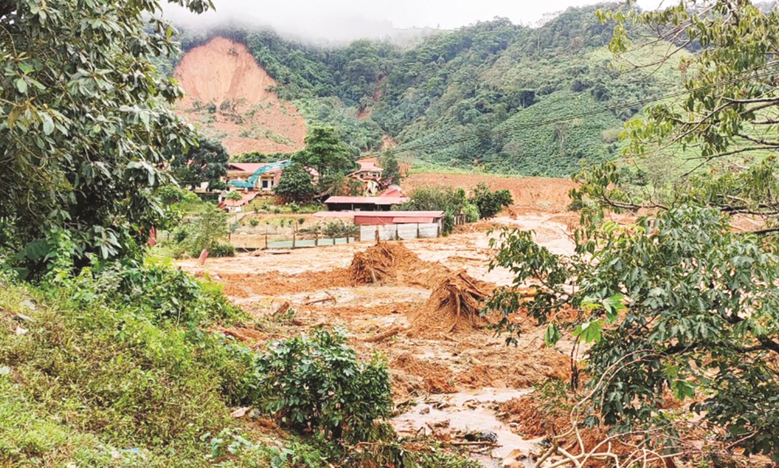 Diện tích rừng tự nhiên giảm là một trong những nguyên nhân khiến tình trạng lũ quét, sạt lở đất ngày càng nghiêm trọng. (Ảnh minh họa)