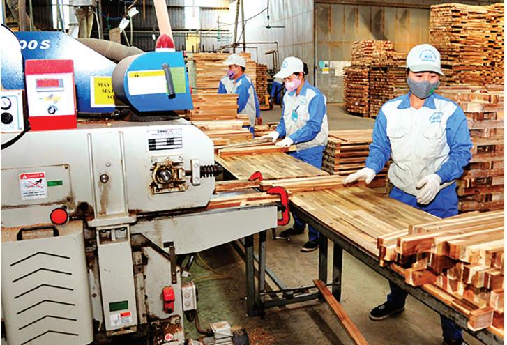Dây chuyền chế biến gỗ của Công ty cổ phần Woodsland Tuyên Quang đã sản xuất được 680.000 m3/năm