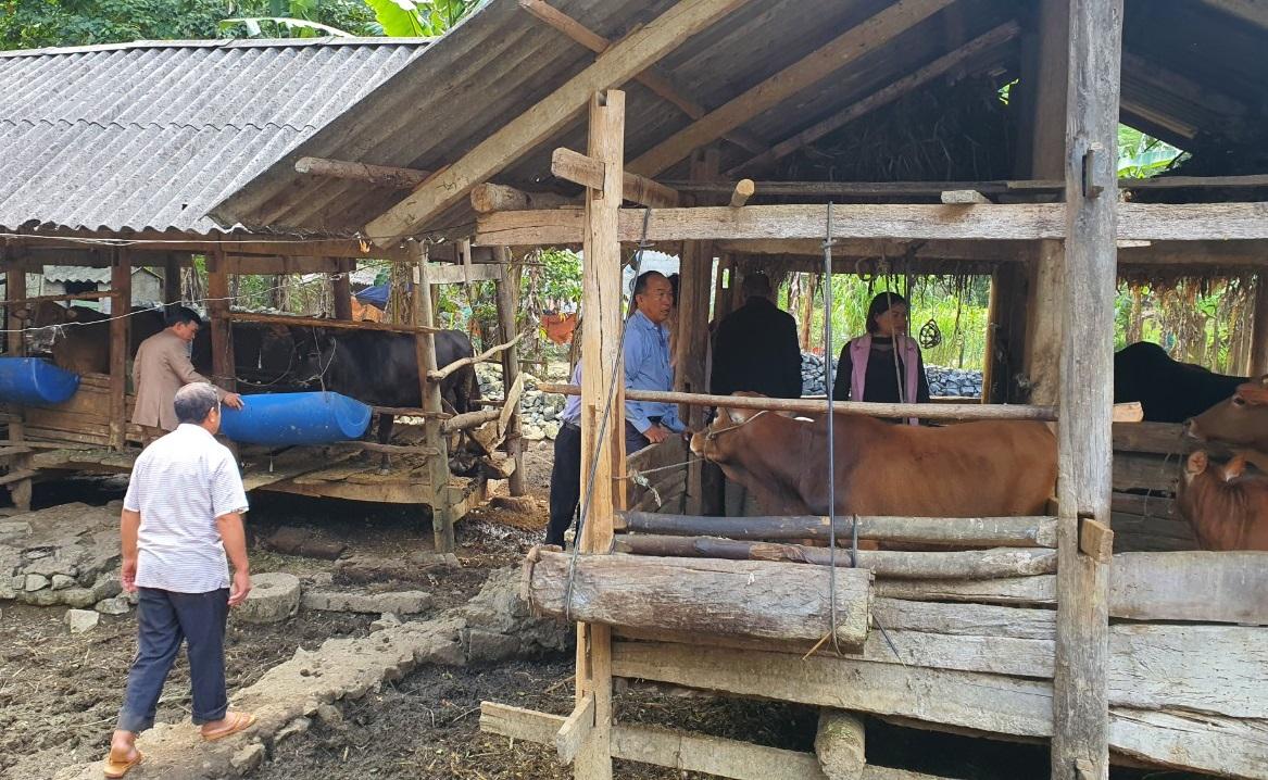 Đoàn đại biểu Người có uy tín Sơn La thăm quan mô hình phát triển sản xuất tại huyện Mèo Vạc, Hà Giang.