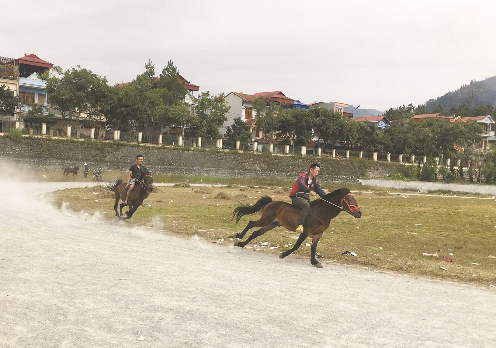 Rèn kỹ năng bám cua, điều khiển ngựa