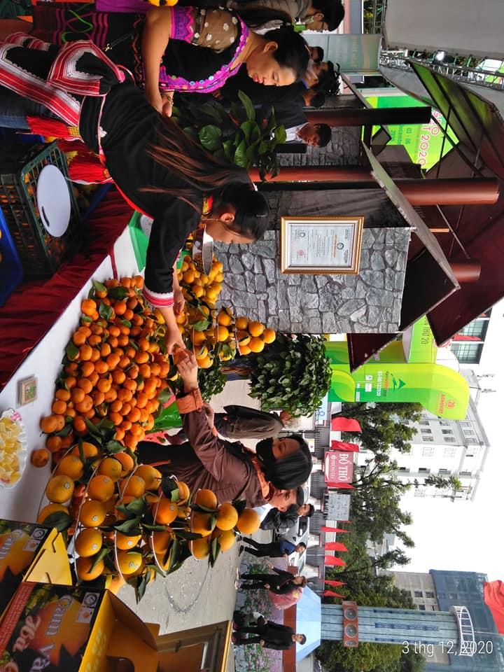Quầy hàng giới thiệu sản phẩm cam sành tỉnh Hà Giang.