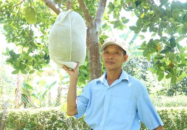 Lão nông Nguyễn Thành Hạt (SN 1966) đã thoát nghèo thành công nhờ áp dụng mô hình trồng cây ăn quả