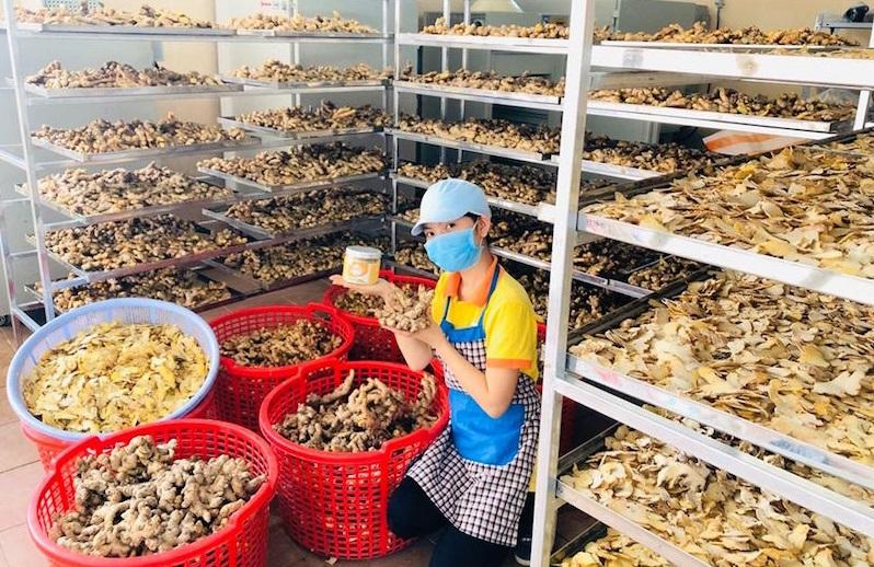 Năm 2016, Nga bắt đầu lang thang trên bản của người đồng bào dân tộc thiểu số để tìm nguyên liệu từ củ gừng, củ nghệ, hạt gạo lứt, mật ong rừng