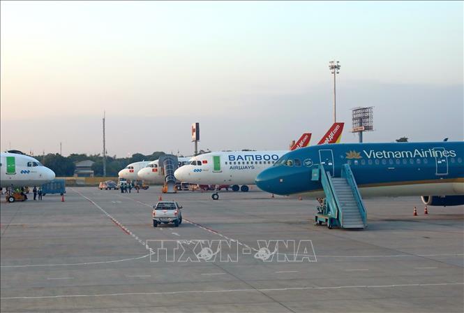Máy bay của các hãng hàng không Việt Nam tại sân bay Nội Bài. Ảnh: TTXVN