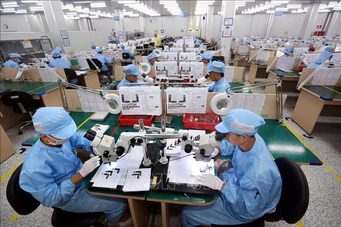 Dây chuyền sản xuất, kiểm tra các bản mạch điện tử dạng dẻo, nhiều lớp tích hợp của Công ty TNHH Young Poong Electronics VINA tại khu công nghiệp Bình Xuyên II (Vĩnh Phúc). Ảnh minh họa: TTXVN