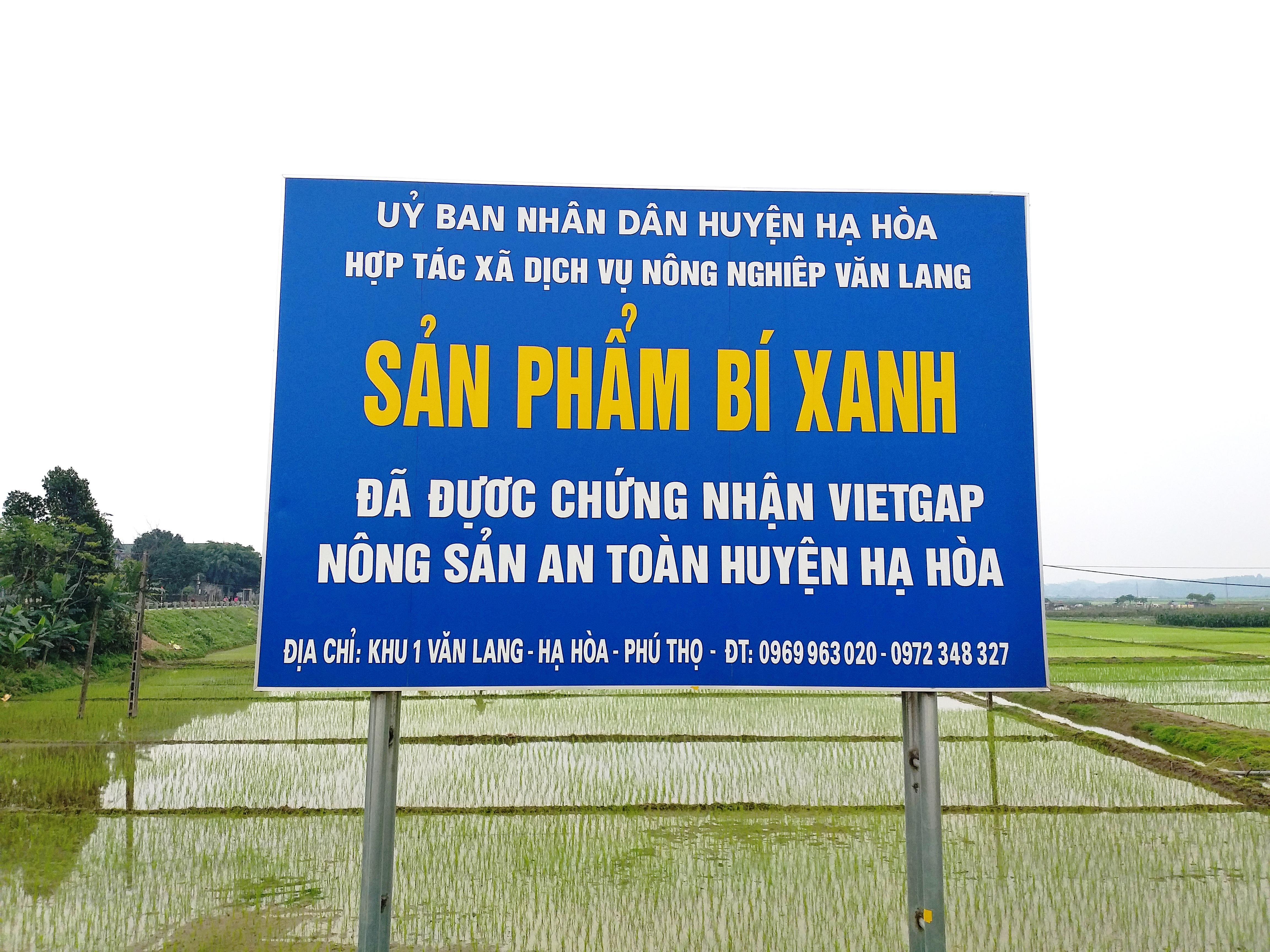 Biển giới thiệu sản phẩm bí xanh Văn Lang.