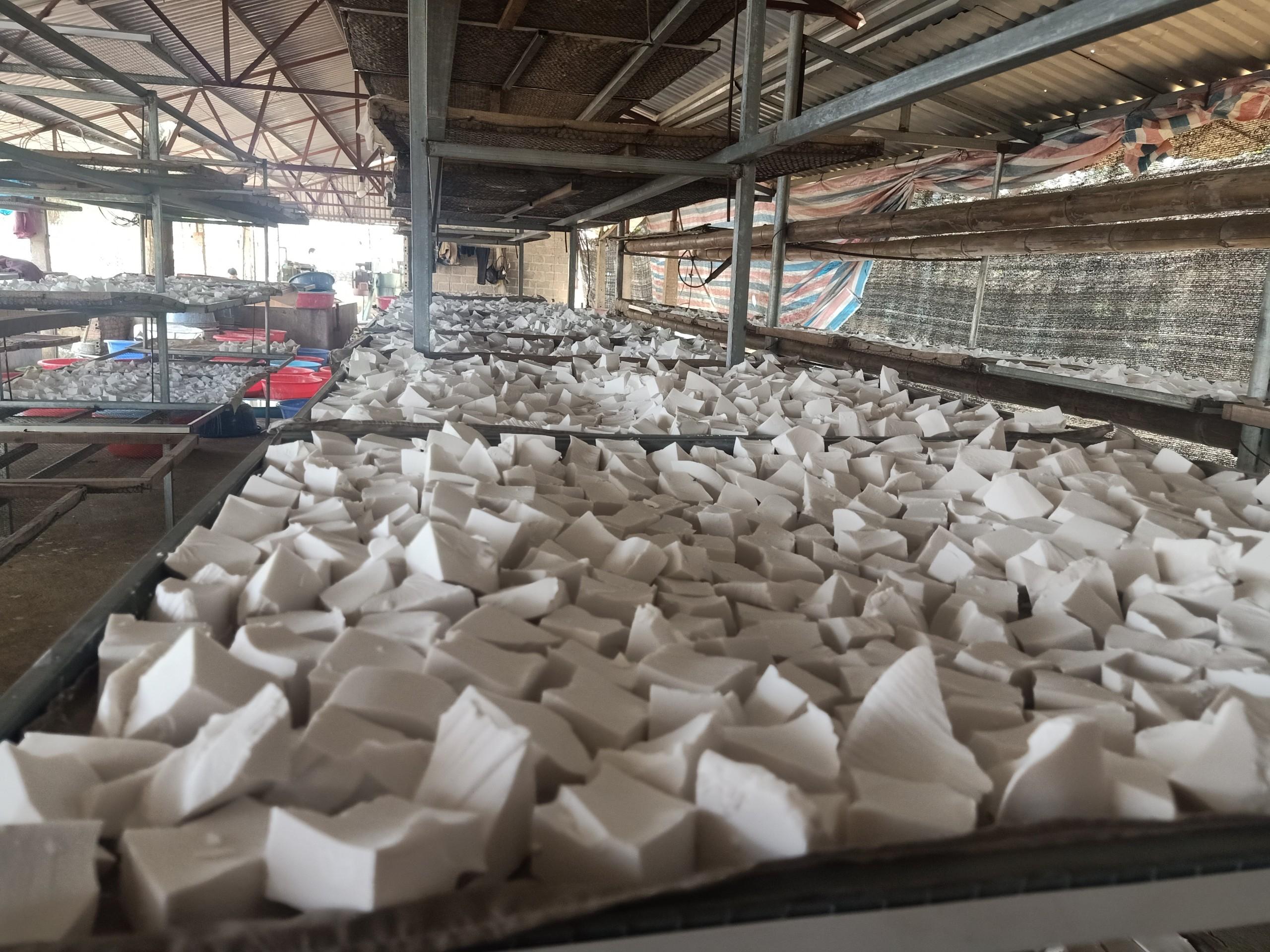 Quy trình từ trồng đến thu hoạch và sản xuất thành tinh bột sắn dây Ngọc Liên được người dân áp dụng kỹ thuật máy móc thay thế sức người.