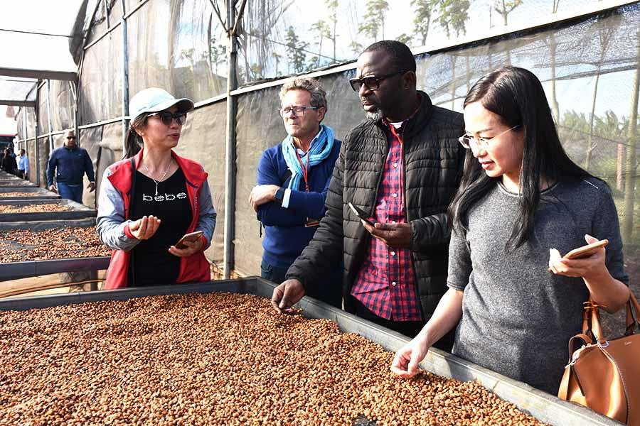 Các chuyên gia đánh giá cao chất lượng cà phê tại Việt Nam