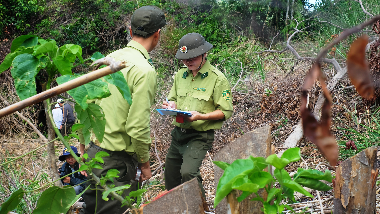 Lực lượng chức năng khám nghiệm hiện trường vụ phá rừng Suối Tân