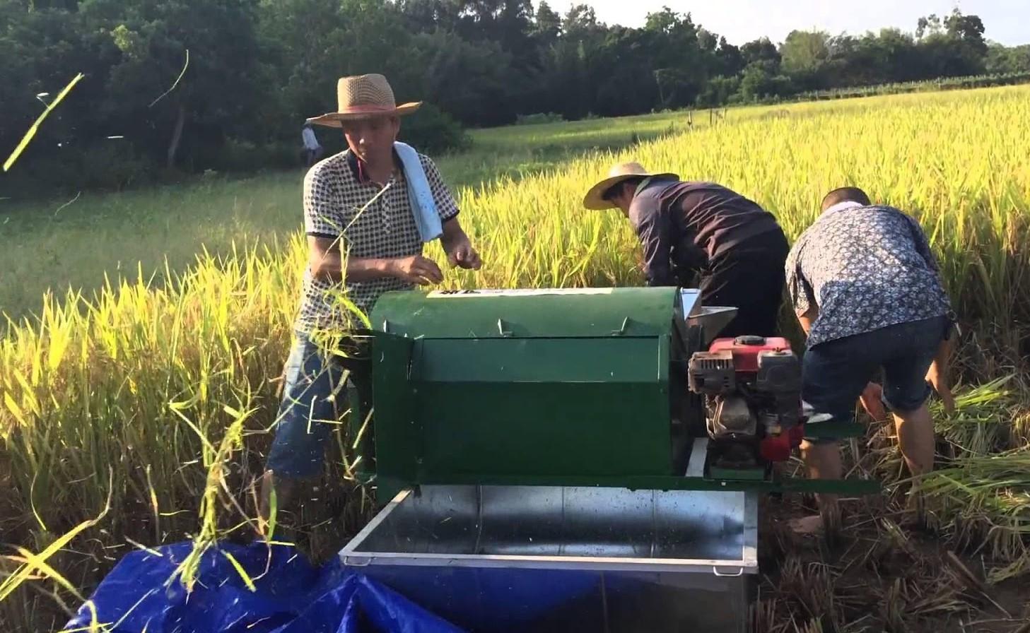 Nông dân sử dụng máy nông nghiệp nhưng không trang bị bảo hộ lao động rất dễ xảy ra tai nạn lao động.