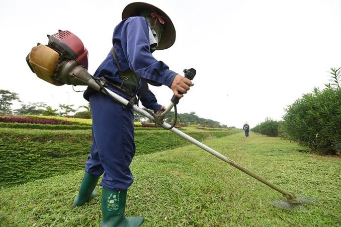 Nông dân sử dụng máy cắt cỏ cần trang bị đầy đủ các đồ bảo hộ lao động nhằm bảo đảm an toàn khi sử dụng máy,