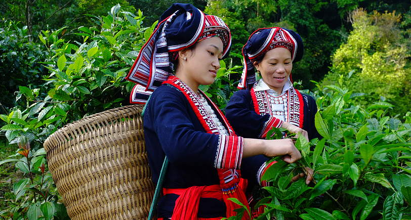 Phụ nữ DTTS trên cả nước nỗ lực vượt qua khó khăn, thay đổi cuộc sống của mình, đạt được những thành tựu đáng ghi nhận.