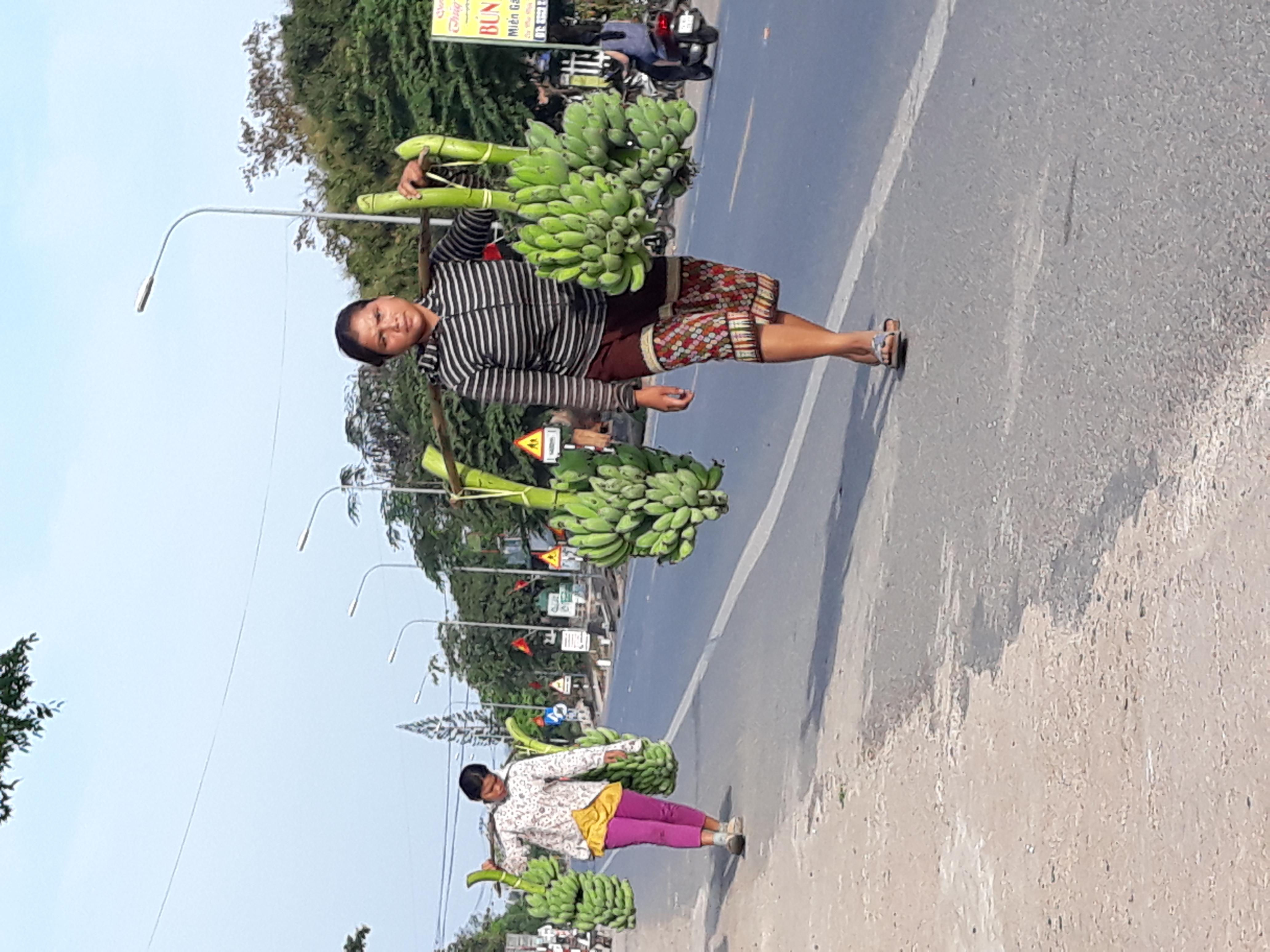 Người dân Hướng Hóa bán chuối dọc quốc lộ 9