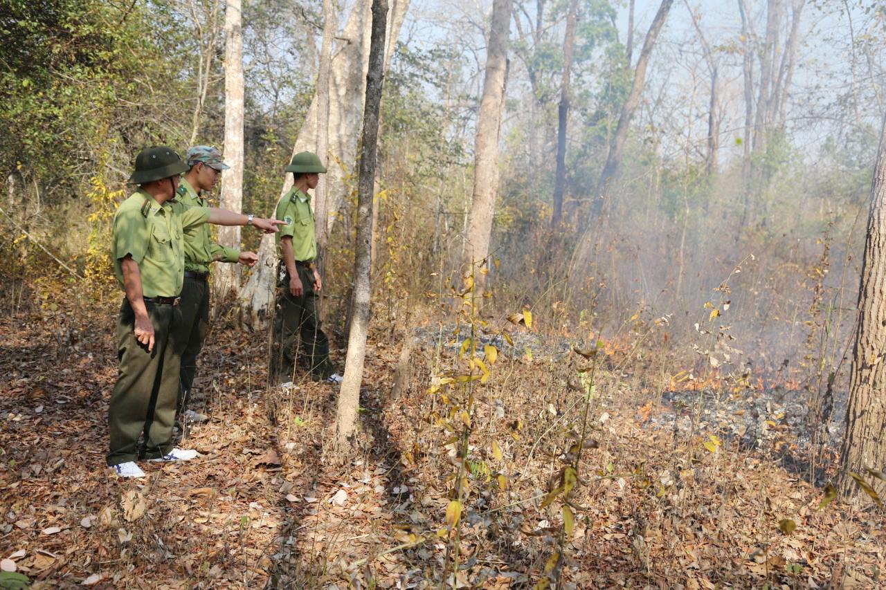 Cán bộ kiểm lâm chủ động kiểm tra việc phát dọn khu vực giáp ranh giữa rẫy của người dân và rừng