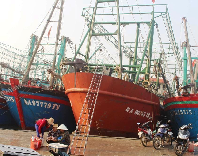Toàn huyện Quỳnh Lưu có hơn 40 tàu đóng theo nghị định 67