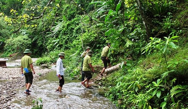 Kiểm lâm Hà Tĩnh thường xuyên tuần tra, kiểm soát, bảo vệ rừng