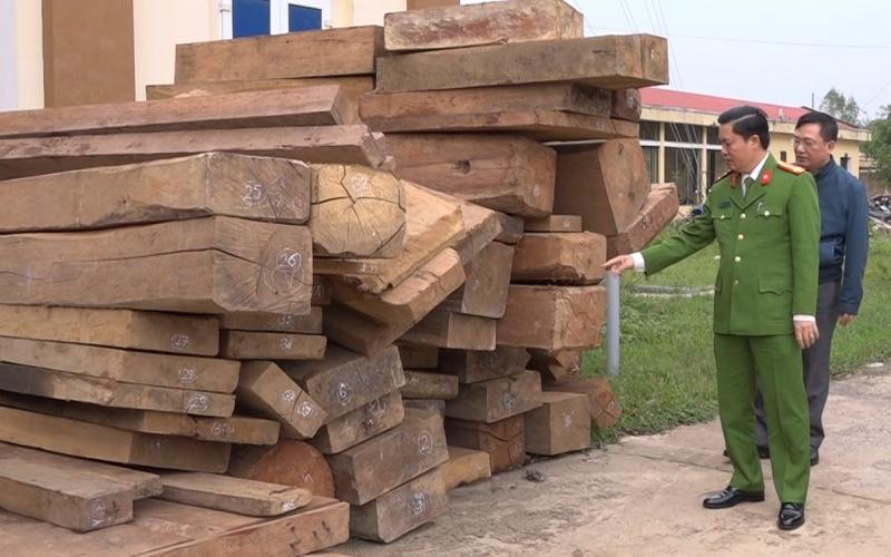 Lực lượng chức năng Quảng Bình thu giữ số lượng gỗ khai thác trái phép