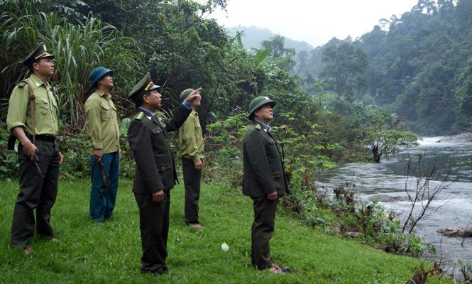 Tuần tra bảo vệ rừng ở Quảng Bình