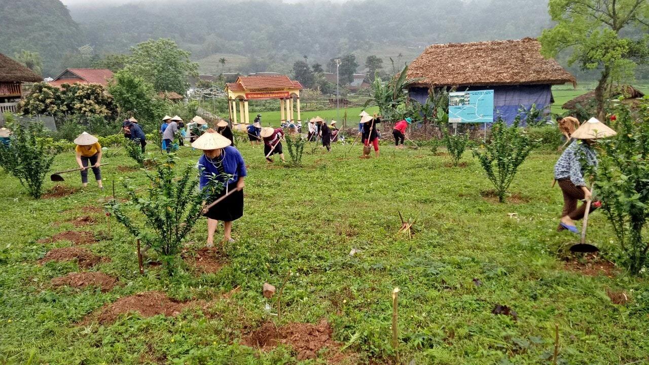 Hội viên phụ nữ góp phần tạo cảnh quan môi trường ngày càng xanh- sạch- đẹp
