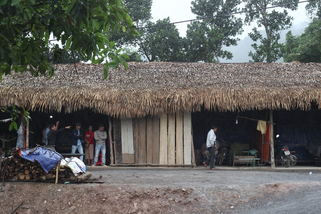 Khu nhà tạm của người dân vùng sạt lở xã Thạch Hóa, huyện Tuyên Hóa.