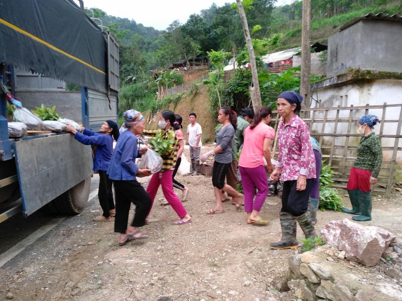Người dân huyện Quảng Hòa vui mừng nhận giống bưởi từ dự án hỗ trợ phát triển sản xuất. (Ảnh chụp khi dịch Covid -19 chưa bùng phát).