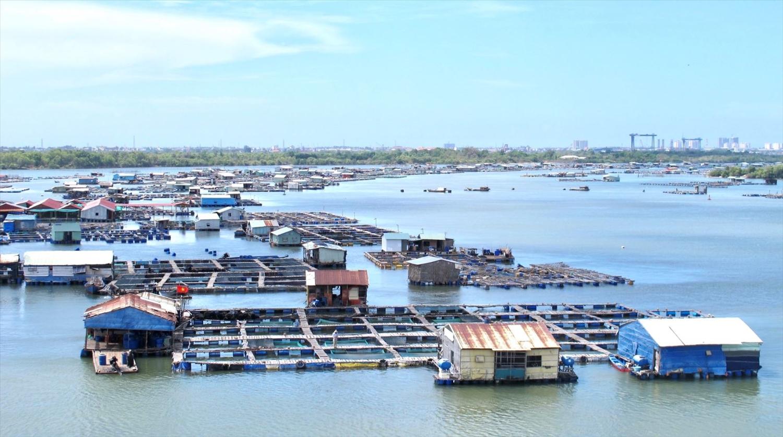Một góc các lồng bè nuôi trồng thủy sản trên sông Chà Và, xã Long Sơn, TP. Vũng Tàu