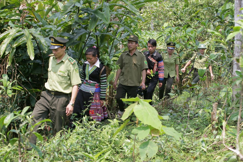 Người dân phối hợp cùng lực lượng kiểm lâm tuần tra bảo vệ rừng