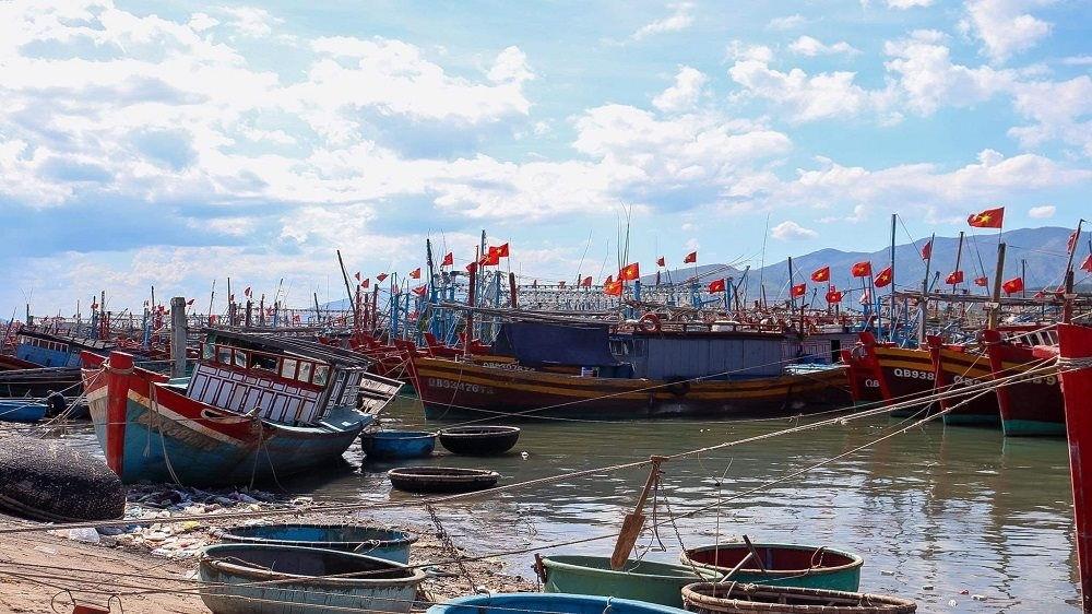 Nhiều tàu thuyền đã vào khu neo đậu tránh bão.