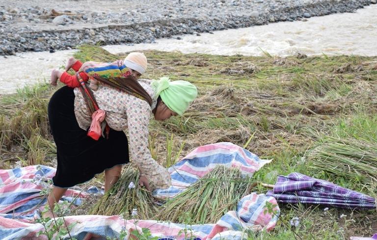 Sau mưa lũ, sinh kế cho ngưởi dân là vấn đề được quan tâm hàng đầu (Ảnh minh họa)