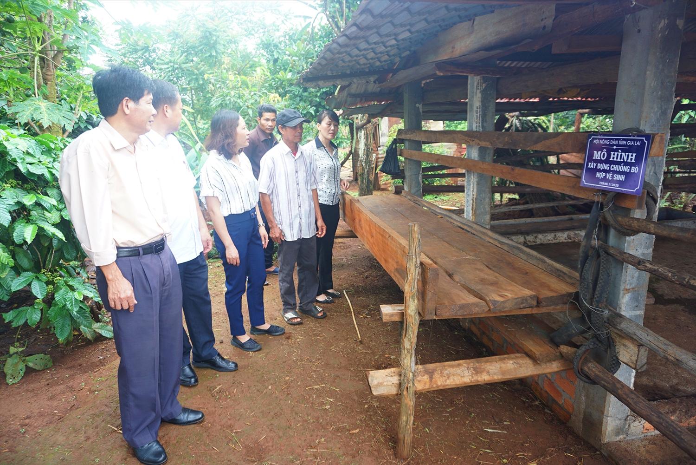 Một mô hình hỗ trợ phát triển sản xuất hiệu quả trên địa bàn Huyện Chư Păh, tỉnh Gia Lai