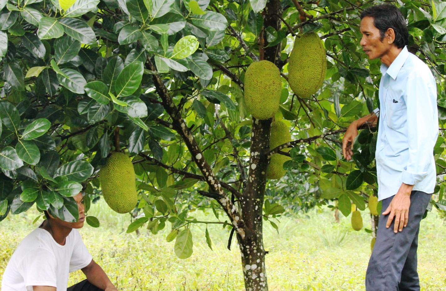 Ông Pi Năng Là Bê (bên phải) tích cực vận động bà con trong xã chuyển đổi cây trồng, vật nuôi cho năng xuất cao