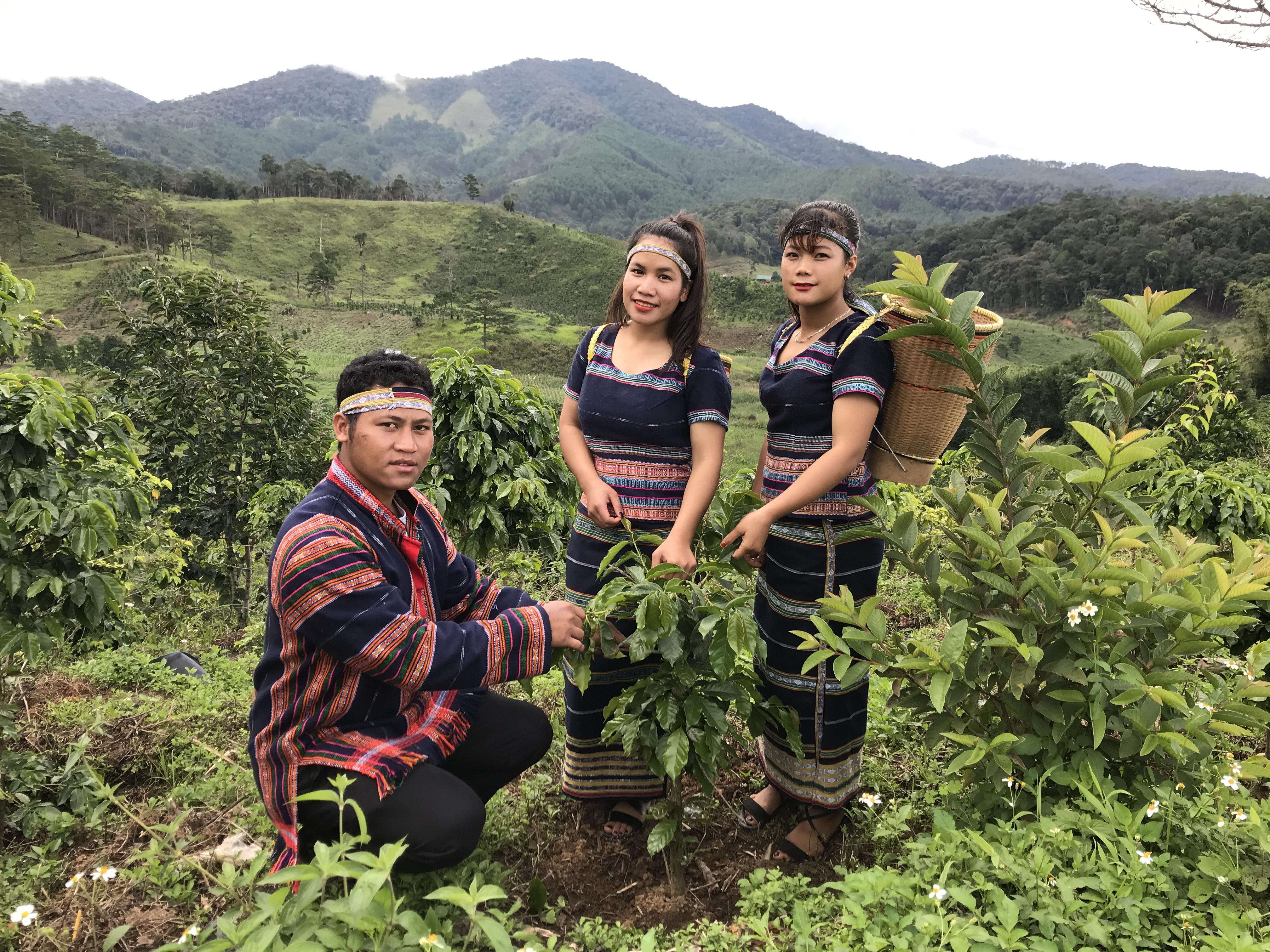 Các thành viên trẻ của Hợp tác xã Cà phê Arabica Chappi Lạc Dương