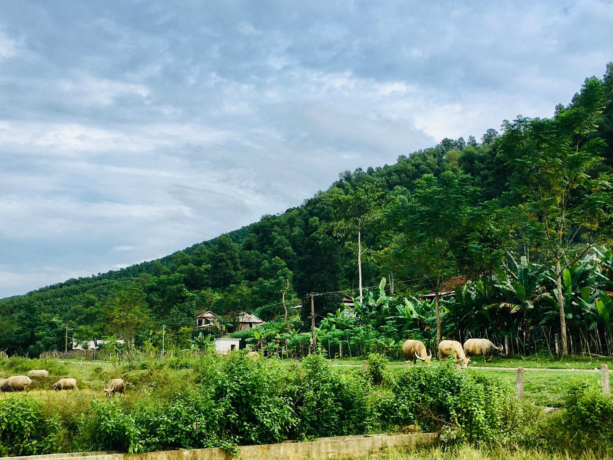 Một góc bản người Chứt ở Rào Tre, xã Hương Liên, huyện Hương Khê