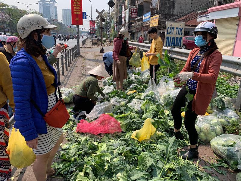 Người dân Hà Nội đến mua rau giải cứu