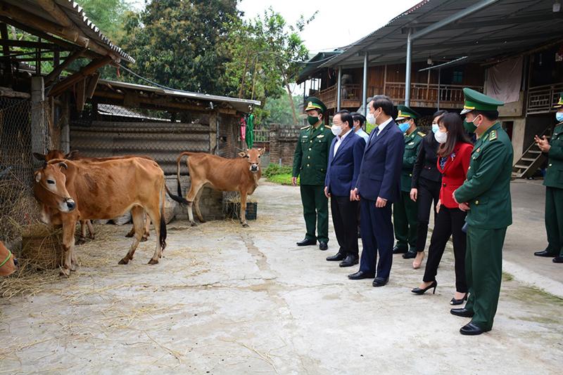 Các đồng chí lãnh đạo Tỉnh ủy, HĐND, UBND, Ủy ban MTTQ Việt Nam tỉnh Điện Biên và lãnh đạo Bộ Chỉ huy BĐBP Điện Biên trao bò giống tặng các gia đình nghèo biên giới.