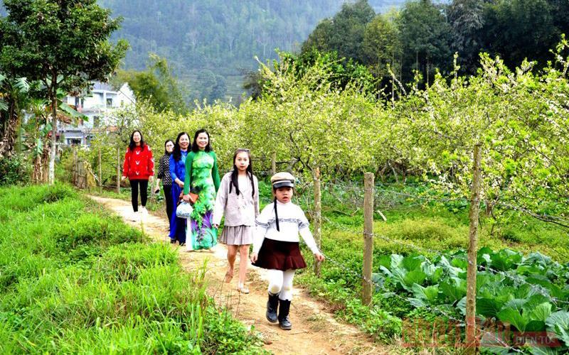 Thu hút du khách đến tham quan, trải nghiệm trong những ngày đầu xuân mới.