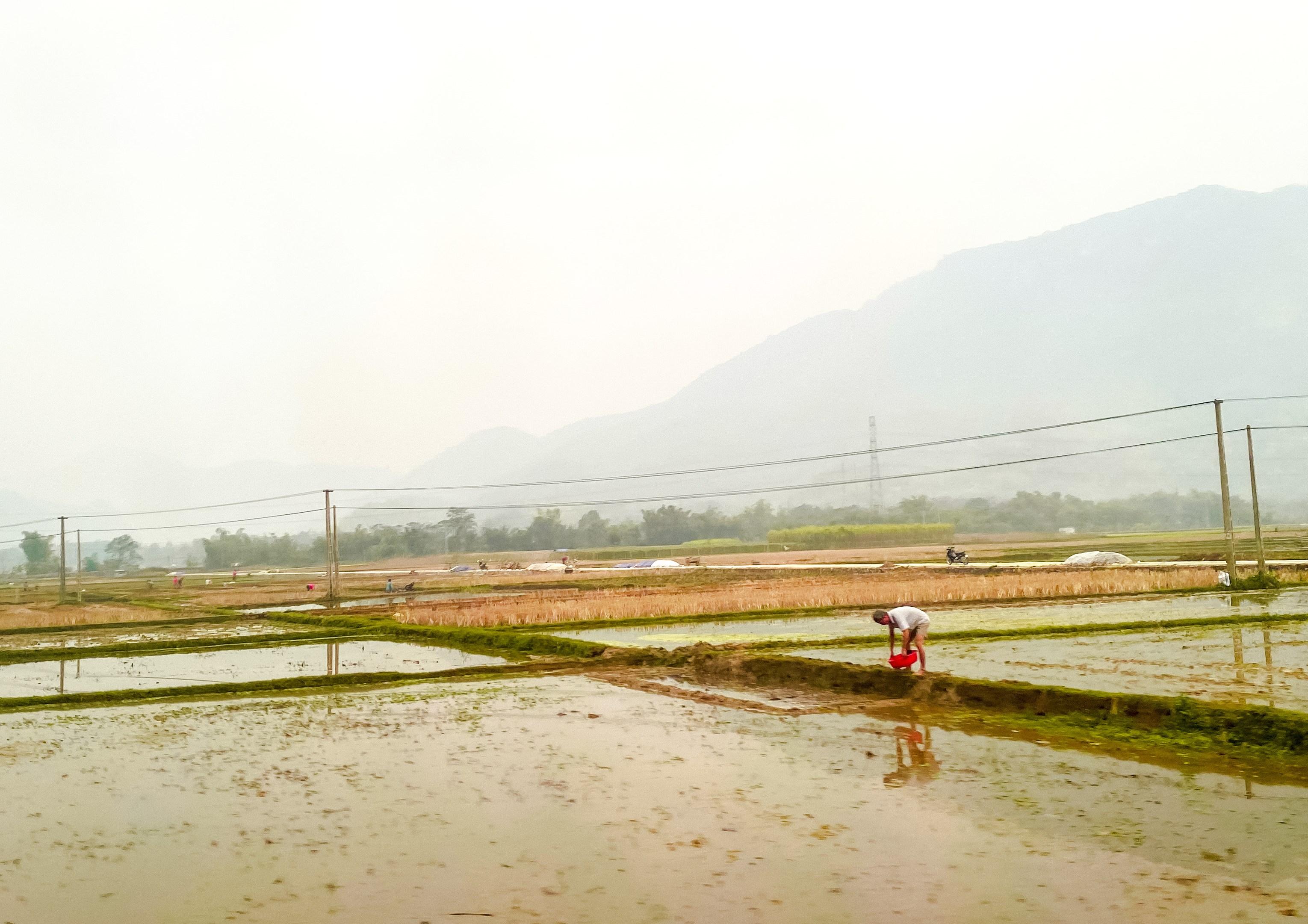 Các công trình kênh mương thủy lợi được xây dựng và đưa vào sử dụng đã tạo điều kiện cho đồng bào dân tộc thiểu số ở Sơn La phát triển sản xuất