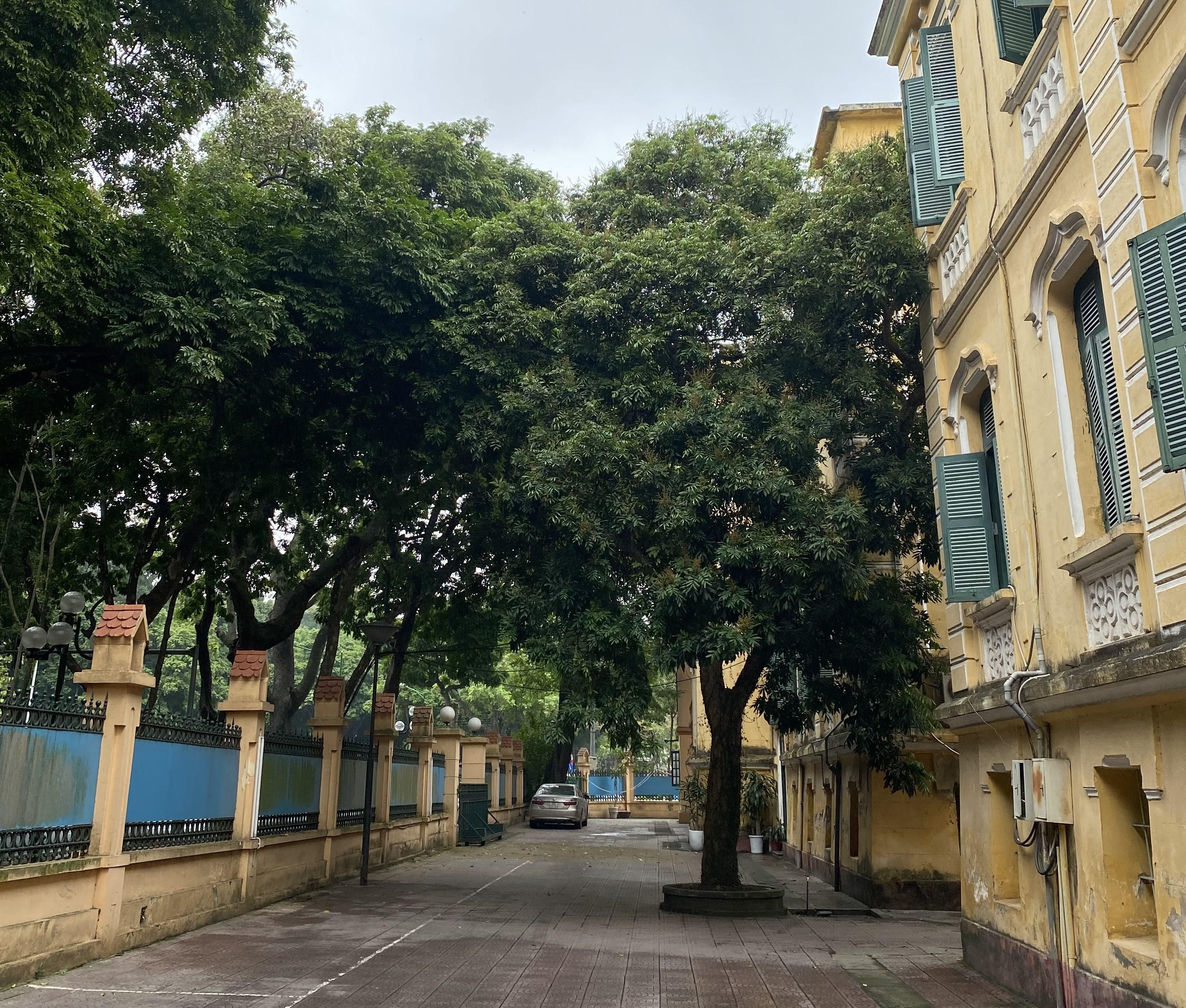 Hà Nội mưa phùn và nồm ẩm (Ảnh: Hằng Nga)