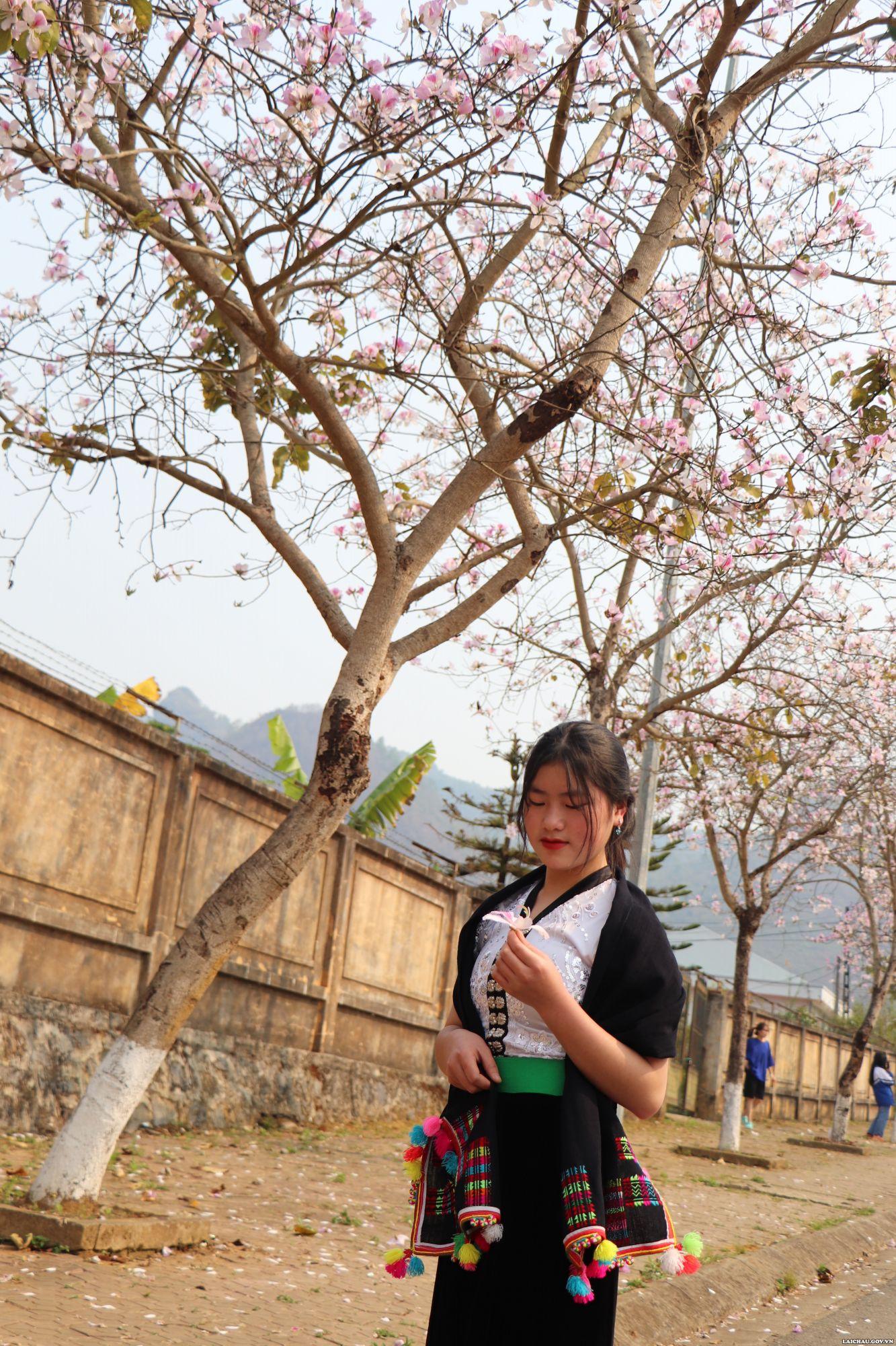 Em gái trong trang phục áo cóm của người dân tộc Thái duyên dáng cùng hoa ban