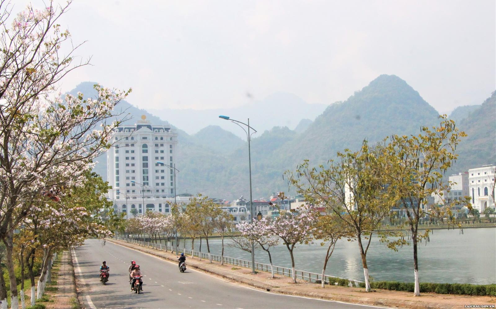 Những ngày này trên khắp các con đường của thành phố Lai Châu đang tràn ngập sắc trắng, tím, hồng của hoa ban - loài hoa đặc trưng của núi rừng Tây Bắc. (Ảnh: Ngọc Sánh)