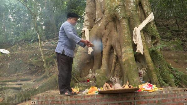 Thầy cúng làm lễ cúng rừng của người Mông huyện Si Ma Cai. Ảnh: laocaitv.vn