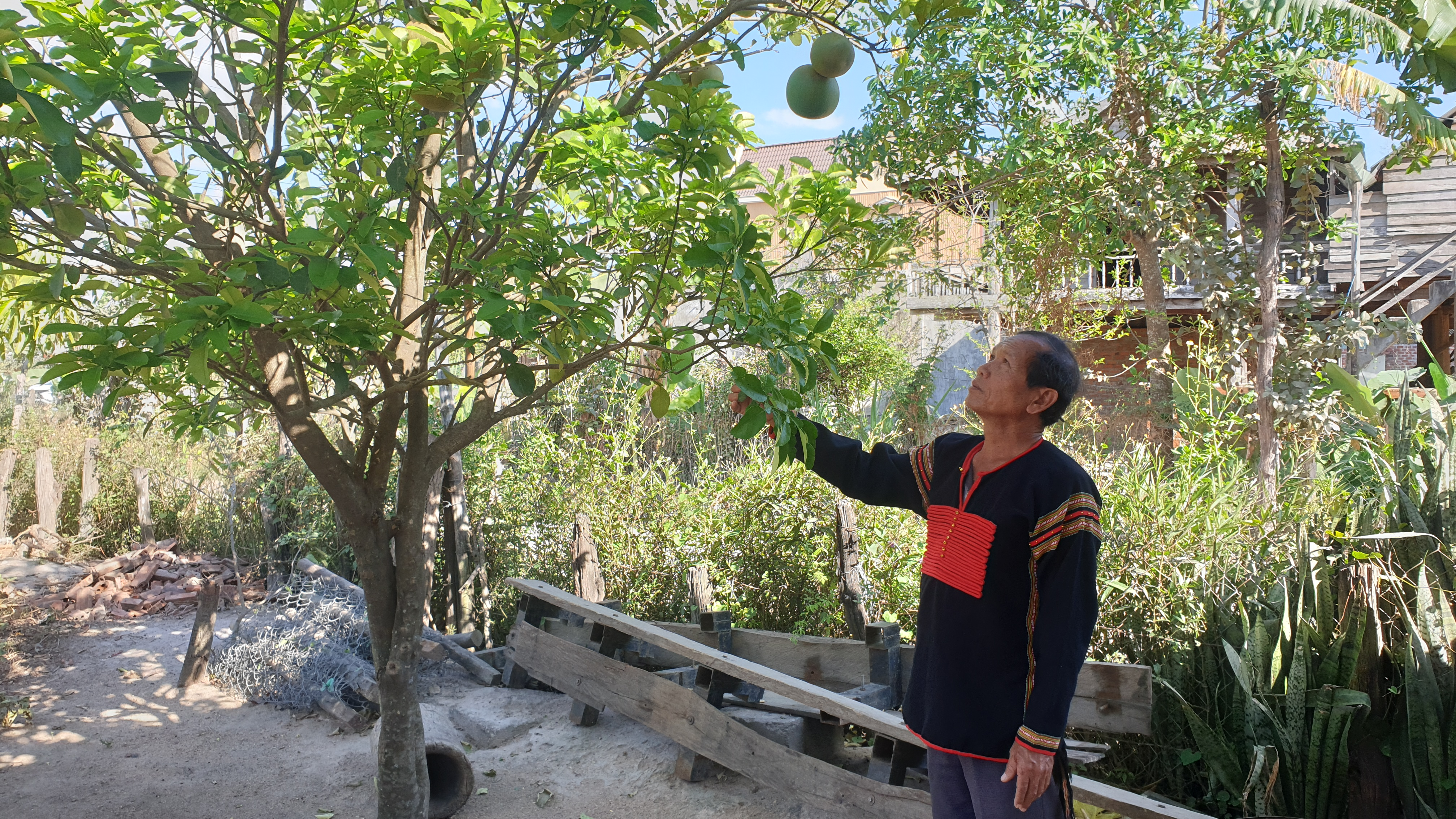 Già Ksor Ry luôn chăm lo phát triển kinh tế gia đình để làm gương cho dân làng làm theo.