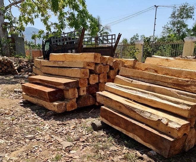 Tang vật vụ việc đang được tạm giữ tại Hạt Kiểm lâm huyện Krông Pa.