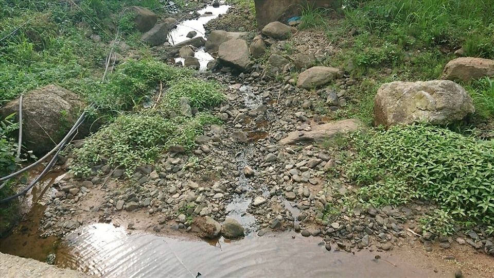 Những con suối thì cạn khiến người dân phải lên núi bắt nước từ các mạch nước ngầm về dùng.