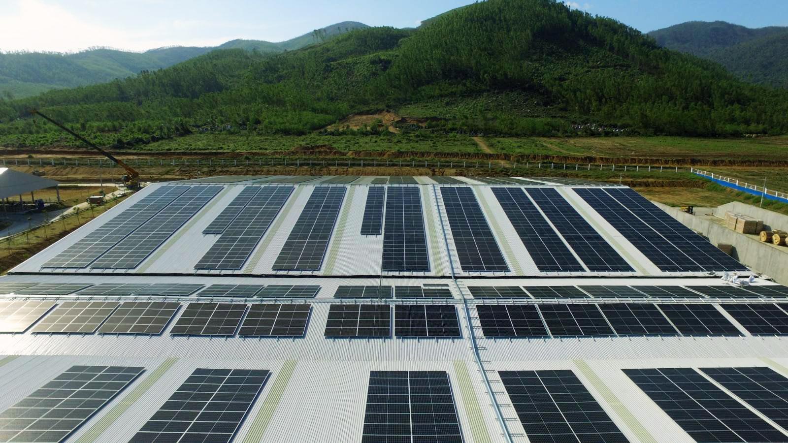 Hệ thống năng lượng mặt trời được Vinamilk triển khai tại Hệ Thống Trang Trại Sinh Thái Vinamilk Green Farm