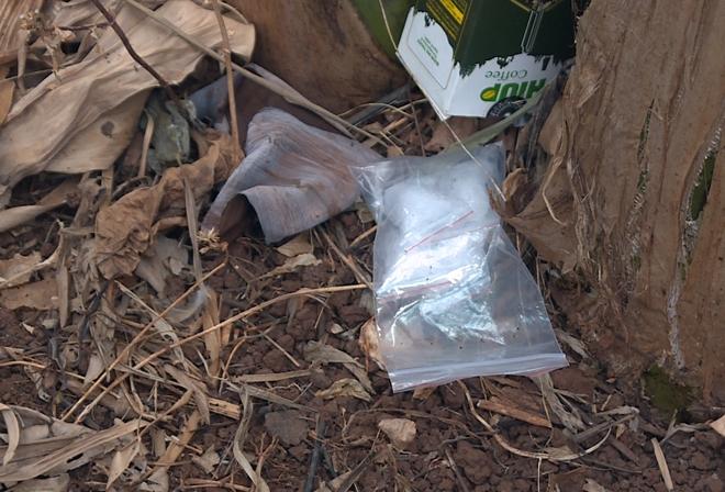 Đưa ma túy từ Điện Biên đến Đắk Lắk tiêu thụ 2