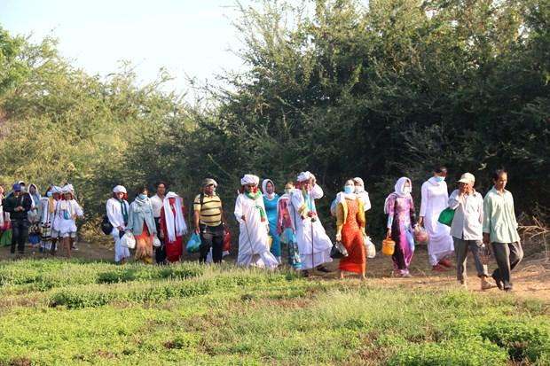 Người dân phải đi bộ một đoạn đường xa mới đến được khu nghĩa trang của người Chăm. Ảnh: Nguyễn Thanh - TTXVN