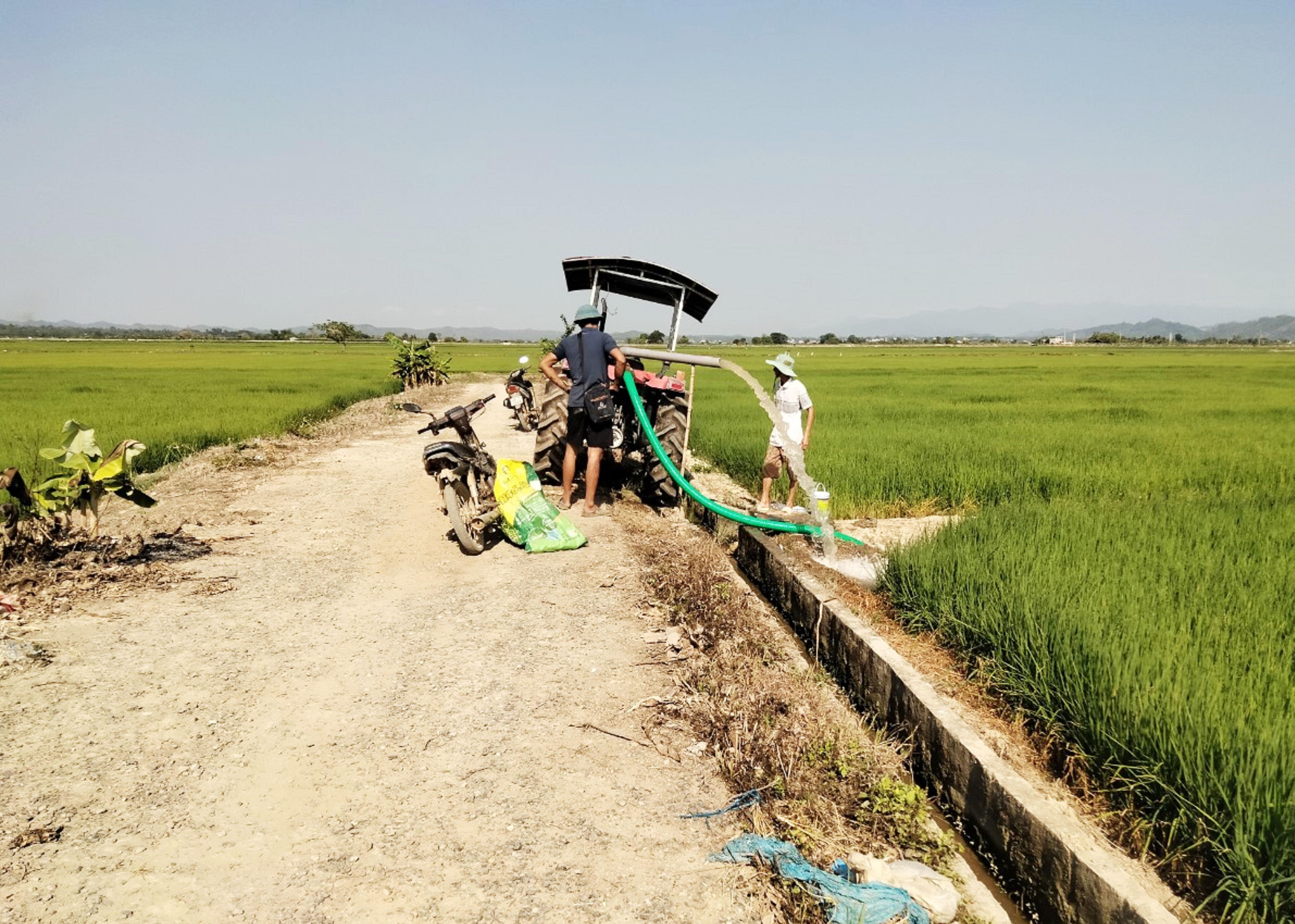 Kênh mương công trình thủy lợi Suối đá thấp hơn rất nhiều chân ruộng nên người dân phải dùng máy bơm bơm nước chống hạn cho lúa