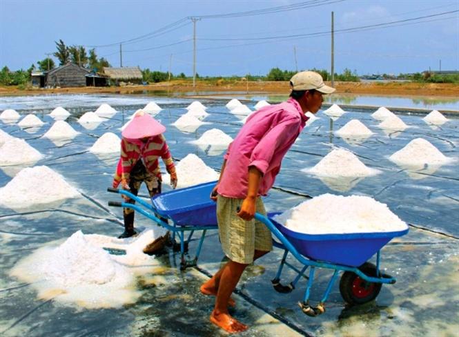 Diêm dân Ba Tri đang lao động trên các ruộng muối